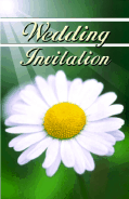 Wedding Invitation with Daisy